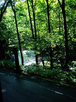 奥入瀬渓流_26_銚子大滝.jpg