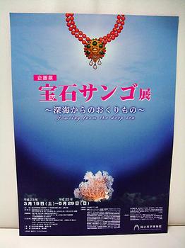 宝石サンゴ展チラシ.jpg