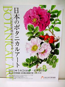 日本のボタニカルアートチラシ.jpg
