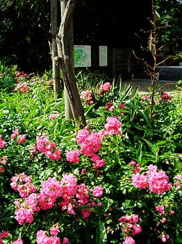東京都庭園美術館_03.jpg