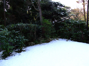 根津美術館&庭園_10.jpg