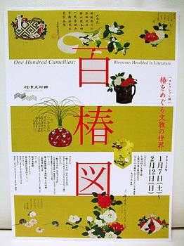 百椿図チラシ.jpg